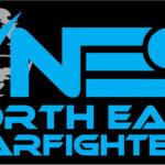 NES_logo con scritta